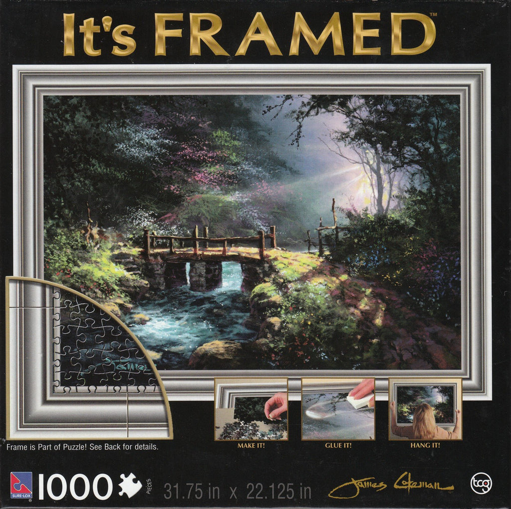 Hidden Dream 1000 Piece It's Framed Puzzle