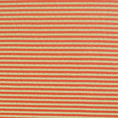 Double Face Jersey Knit Dot Stripe Sunshine - Sold Out - Style Maker Fabrics