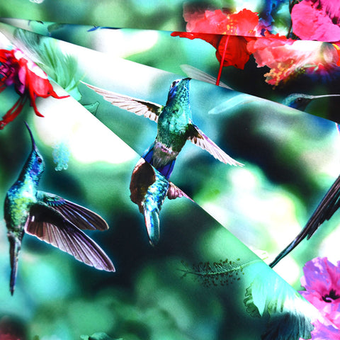 Hummingbird Garden Digital Print Cotton Teal