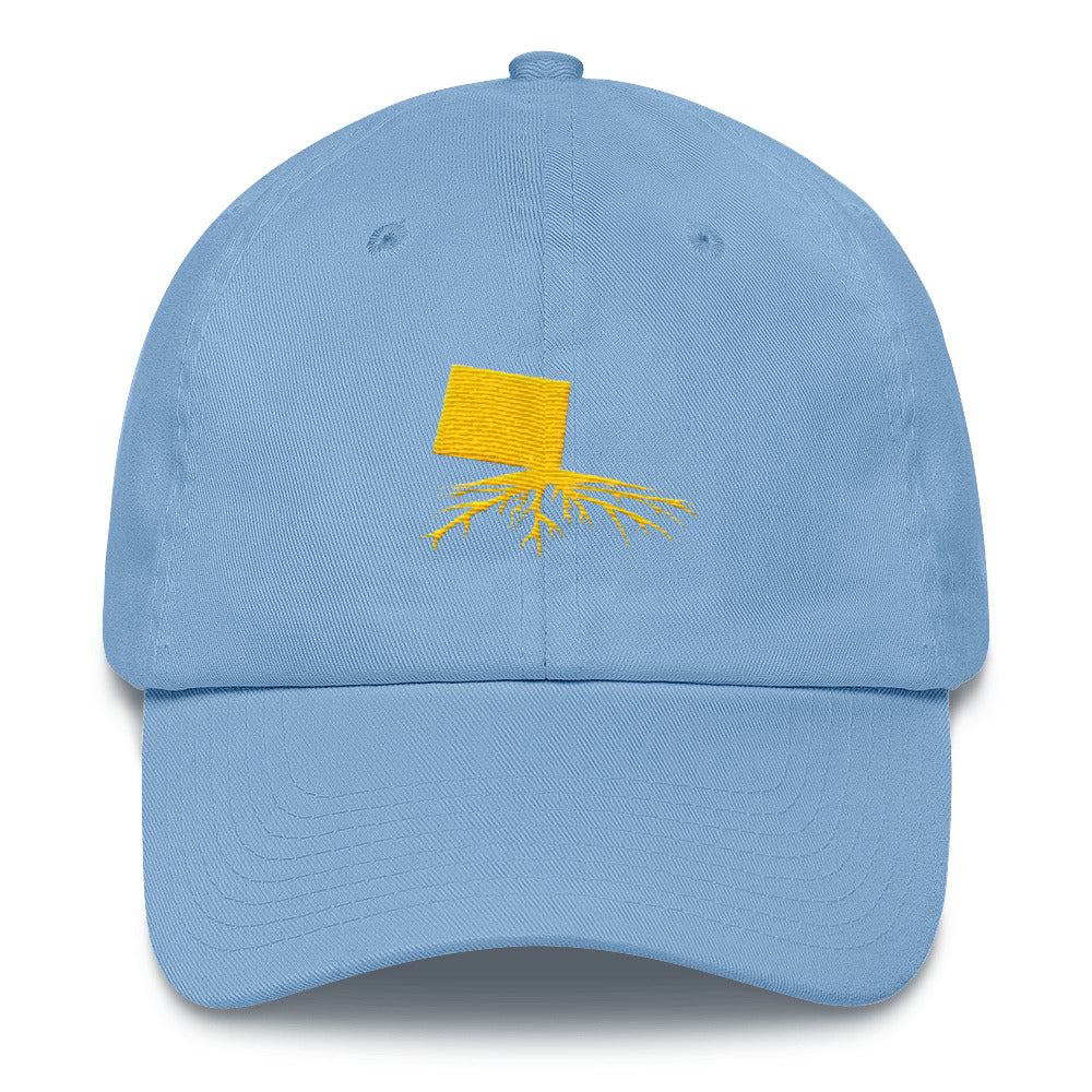 CO Dad Hat