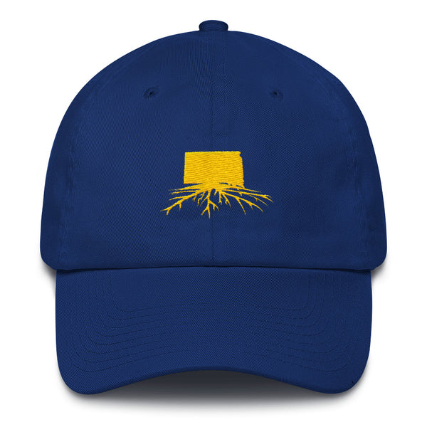 SD Dad Hat