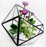 Glass Terrarium/mini Greenhouse/ Tabletop Succulent Planter/wedding table decor.