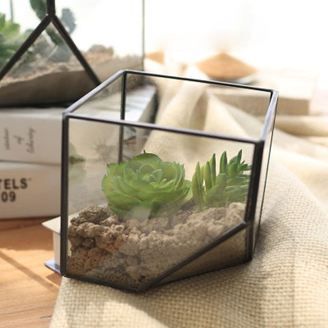 Glass Terrarium/mini Greenhouse/ Tabletop Succulent Planter/Candle holder