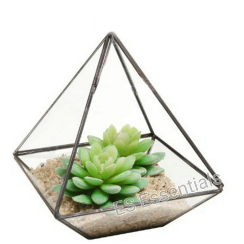 Glass Prism Air Plant Terrarium / Tabletop Succulent Planter