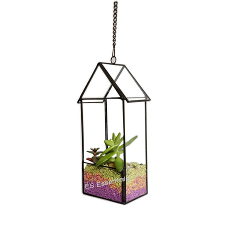Hanging Glass Terrarium/mini Greenhouse/ Tabletop Succulent Planter/Candle holder