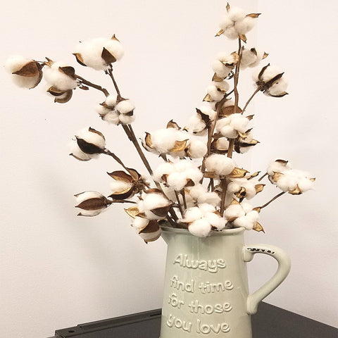 "20""H, 12 Bolls Farm House Rustic Natural Cotton & pod Stems spray pick Branch  fall Thanksgiving Harvest Christmas everyday diy floral"