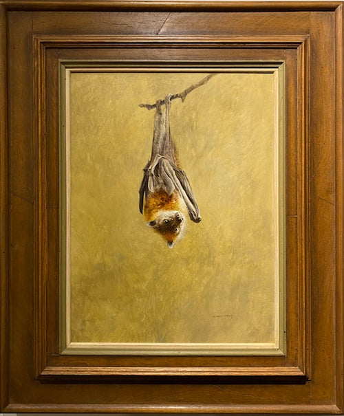 Raymond Ching Flying Fox (Fruit Bat) - aptiques by Authentic PreOwned