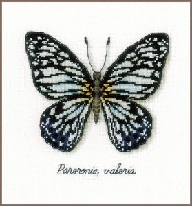 Vervaco - Blue Butterfly Cross Stitch Kit - WOOLS OF NATIONS