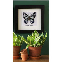 Load image into Gallery viewer, Vervaco - Blue Butterfly Cross Stitch Kit - WOOLS OF NATIONS