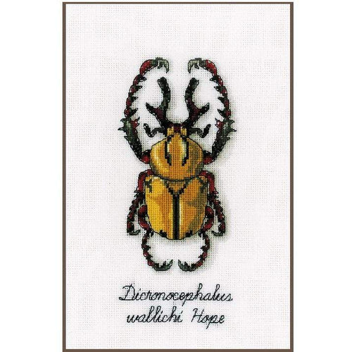 Vervaco - Golden Beetle Cross Stitch Kit - WOOLS OF NATIONS