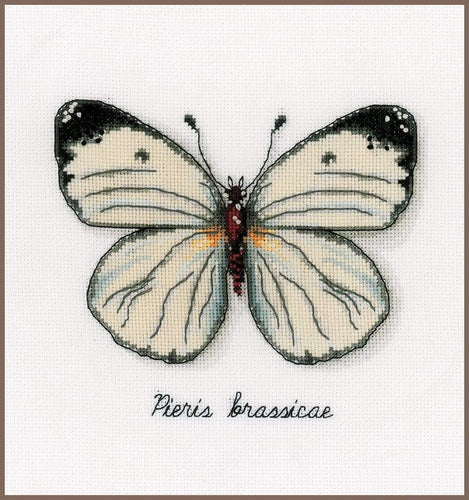Vervaco - White Butterfly Cross Stitch Kit - WOOLS OF NATIONS