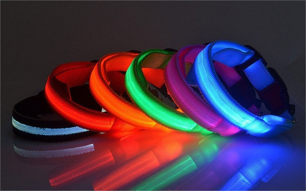 LED Glowing Dog Collar