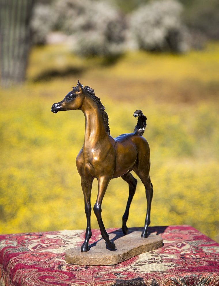 """Charisma"" Smaller 10"" x 14""  Filly Bronze"