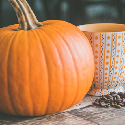 THE OWYN KITCHEN: pumpkin spiced love