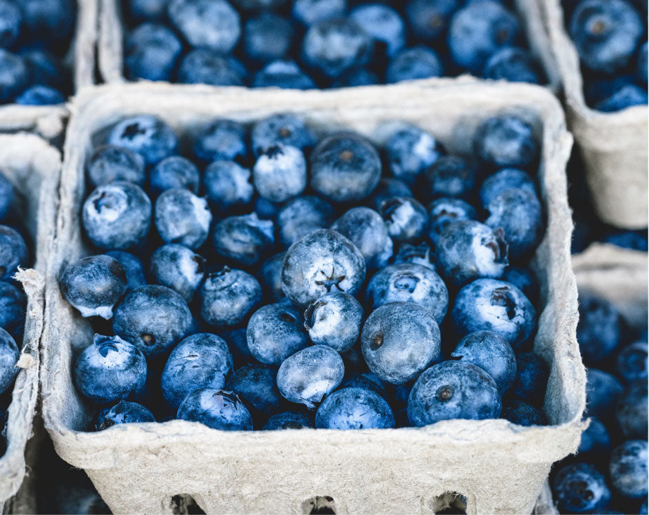 Can plant foods alone fuel the body