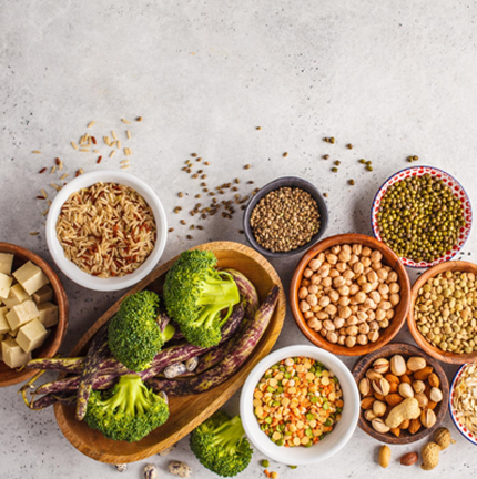 protein foods like tofu, beans, chickpeas, nuts and broccoli in bowls on a white background