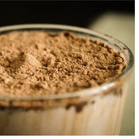 Plant vs. whey protein, what should you choose?