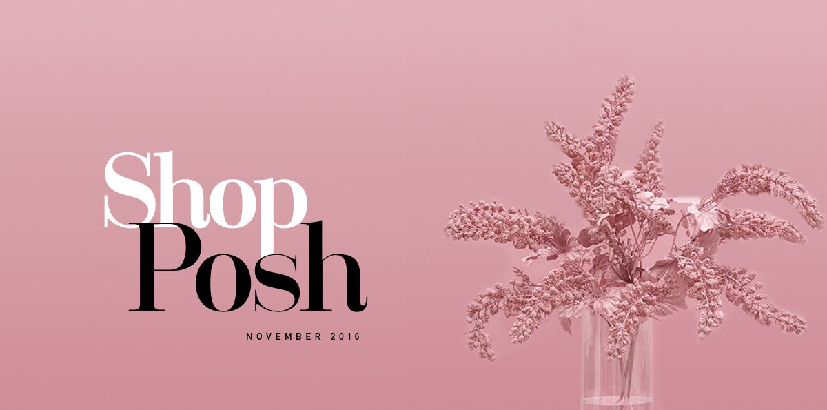 The Posh Lookbook Volume 01 shop
