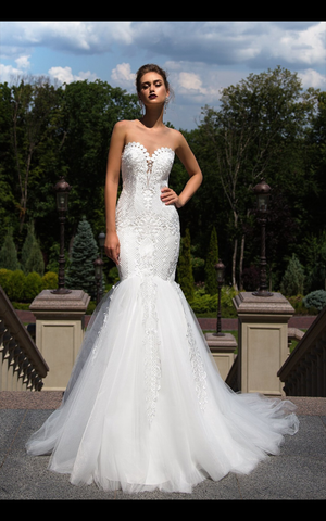 Wedding dress lace fit and Flare by Designer Ida Torez