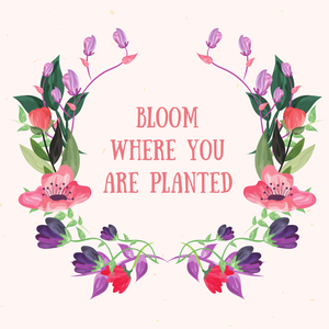 Are You Blooming Where You're Planted?