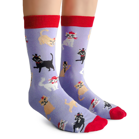 Fun Cute Cats with hats socks