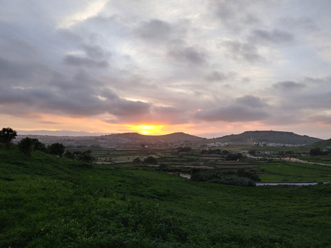 Gozo Countryside 1