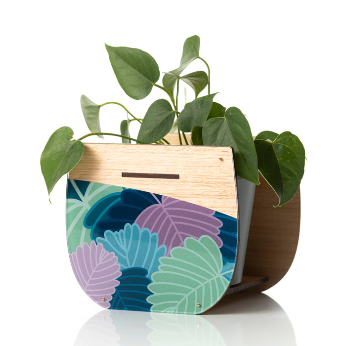 Large Indoor Planter: Fagus. LIMITED EDITION!