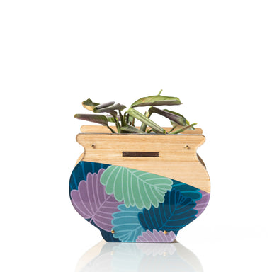 Small Indoor Planter: Fagus. LIMITED EDITION!