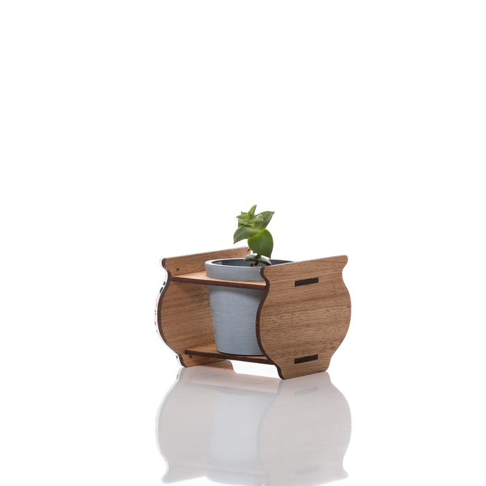 Small Indoor Planter: Tezza