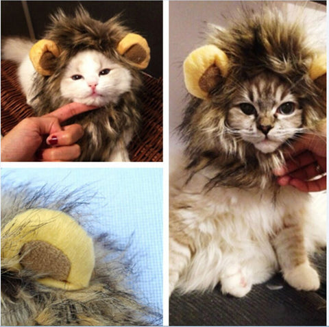 Furry Lion Mane Wig Costume With Ears For Cats