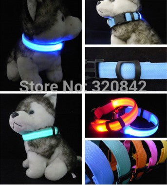 Nylon LED Glow In The Dark Cat Collar