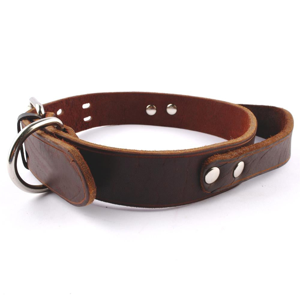 "Genuine Leather Heavy Duty Soft  Working Collar for  Service Dogs (.5"" width)"