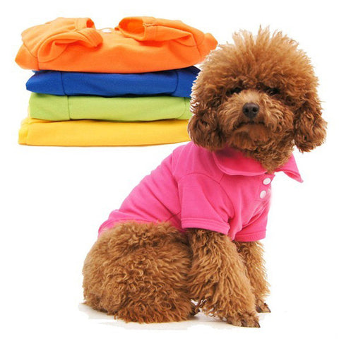 Button Down Collar Jacket For Small Dogs