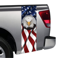 American Flag Bald Eagle #2