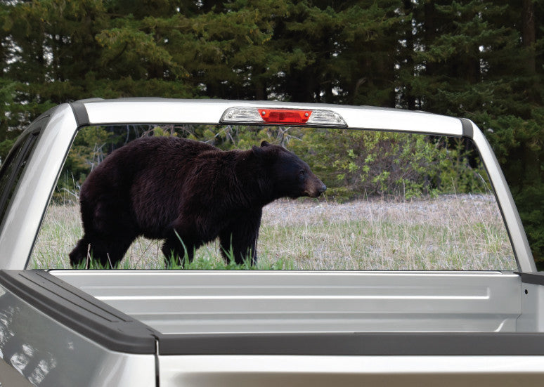 Black Bear Walking Rear Window Decal