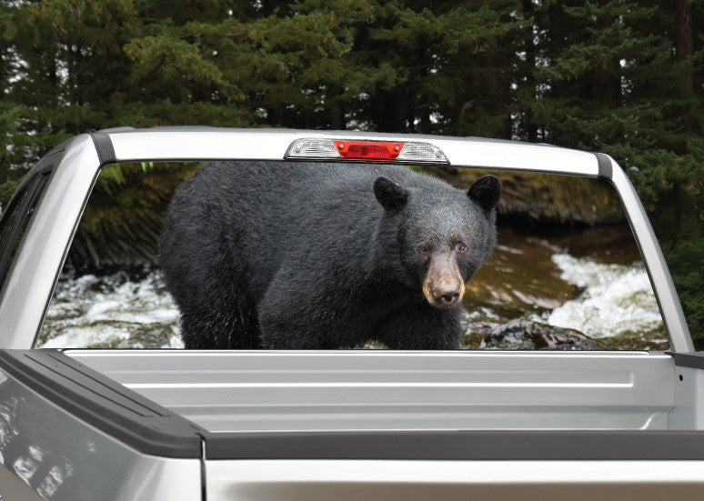 Black Bear Rear Window Decal
