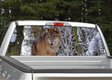 Wolf In The Snow Rear Window Decal