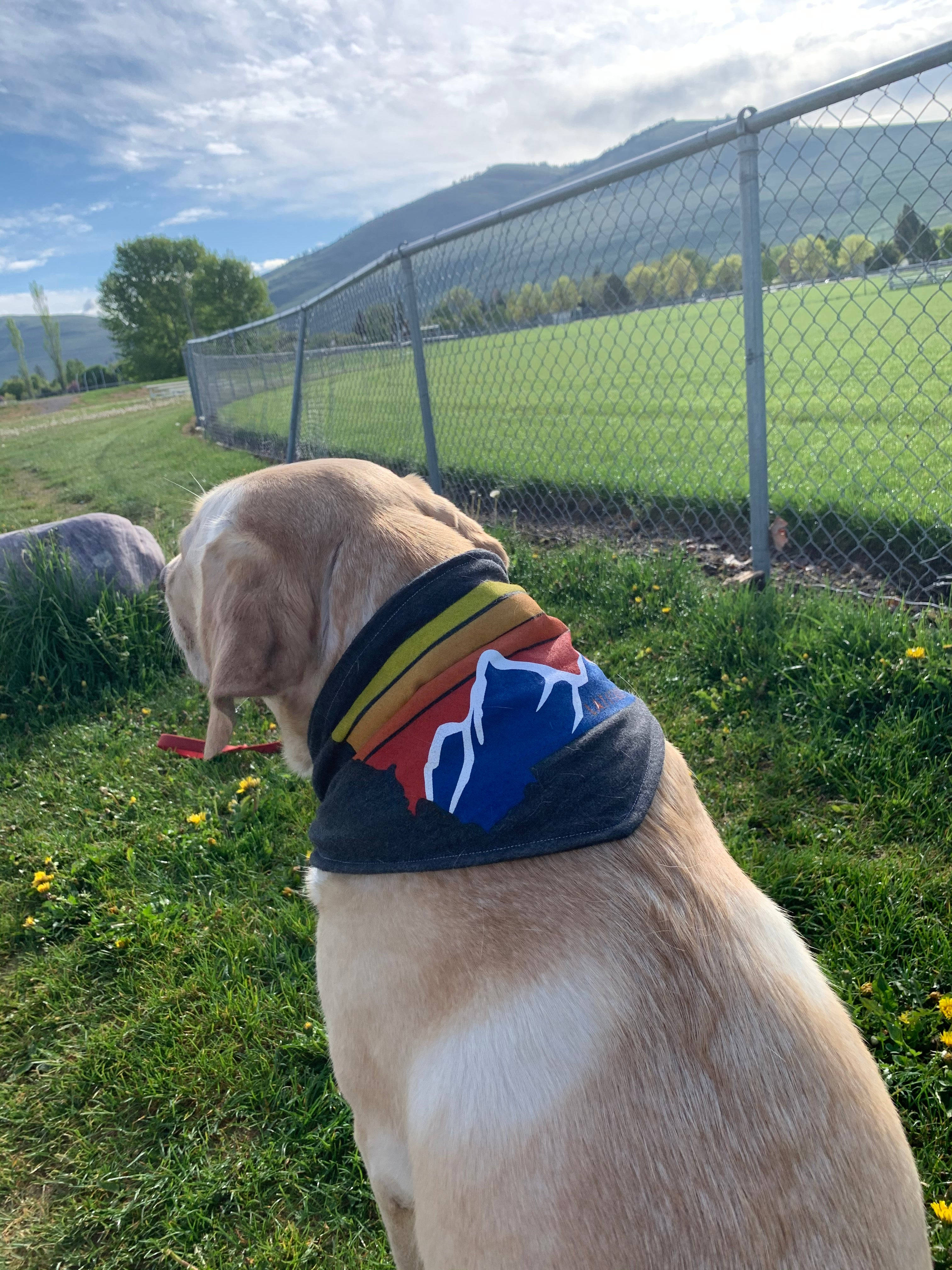 Repurposed Latitude 47° Dog Bandanna