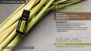 Lemongrass - Cymbopogon Flexuosus - Essential Oil
