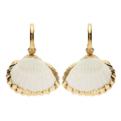 Gold Shell Rimmed Earrings - Chuchka