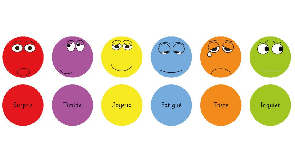 French Emotion cushions Pack 1 - Toy Giant