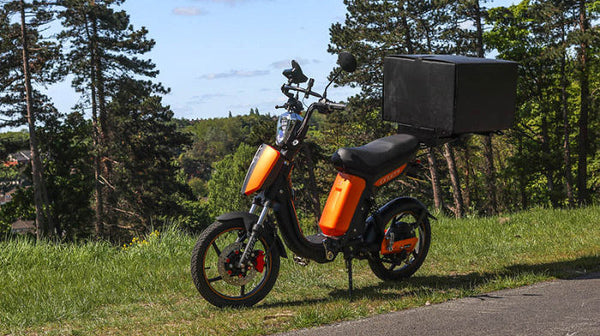 The True Cost Savings & Environmental Advantages of Electric Cargo Bikes