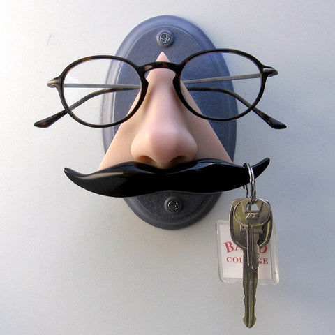 Wall mounted nose sunglasses holder