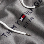 Logo Hoodie in Silver Fog Heather Hoodies Tommy Hilfiger