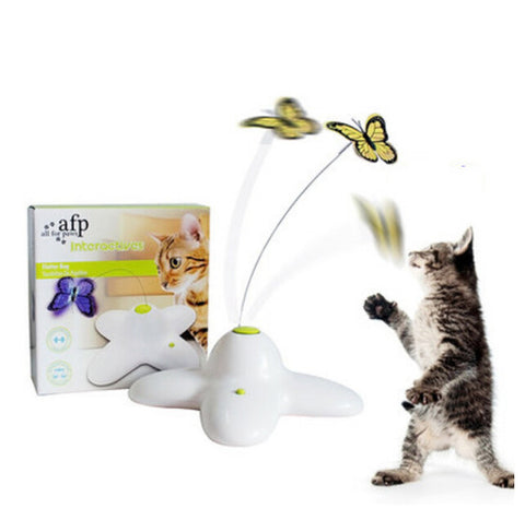 Large Electric Butterfly/Bird Cat Teaser Toy