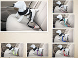 Dog Car Travel Seat Belt - FREE SHIPPING