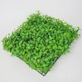 Fish - Green Grass Plants For Fish Tank
