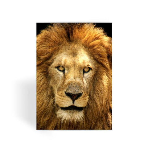 Greeting Card - Lion Face Greeting Card