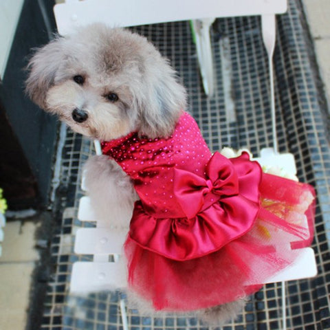 Pet Clothing - Dog Puppy Wedding Party Lace Skirt Clothes
