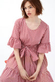Red Gingham Cotton Primrose Hill Dress